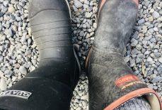 Odd Shoes! Who Me? - Jax Hamilton Cooks